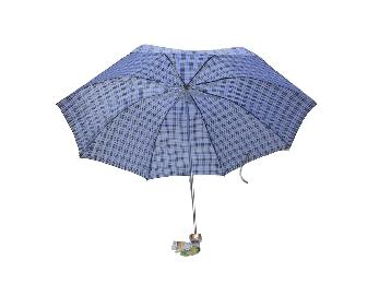 天堂伞(小)